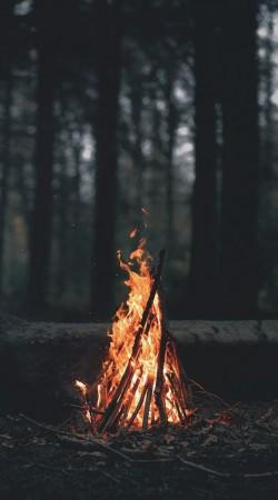 피어오르는 모닥불