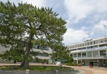 해남군, 주요 관광시설물 및 다중이용시설 휴관