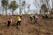 해남군, 새산새숲만들기 2020 조림사업 박차