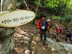 해남군, 3월 30일 해남 달마고도 힐링축제 개최