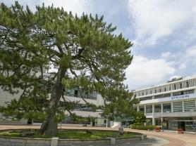 해남군, 국비건의사업 대거 정부예산안 반영