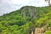 해남군, 3월 13일부터 '해남산과 숲길 이야기' 운영