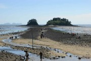 신비의 바닷길, 해남 송지면 대섬에 어촌체험공원 개장