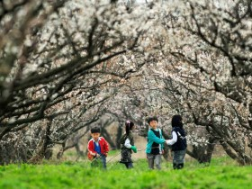 봄맞이 첫여행! 땅끝해남에서 시작하세요