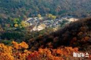 태풍영향으로 해남 대흥사 전남 선차문화 국제교류회 축소 운영