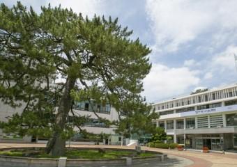 해남군, 해남읍 도시재생 활성화계획 공청회 개최